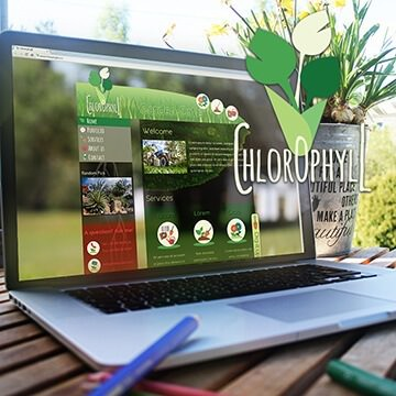 web design website Chlorophyll